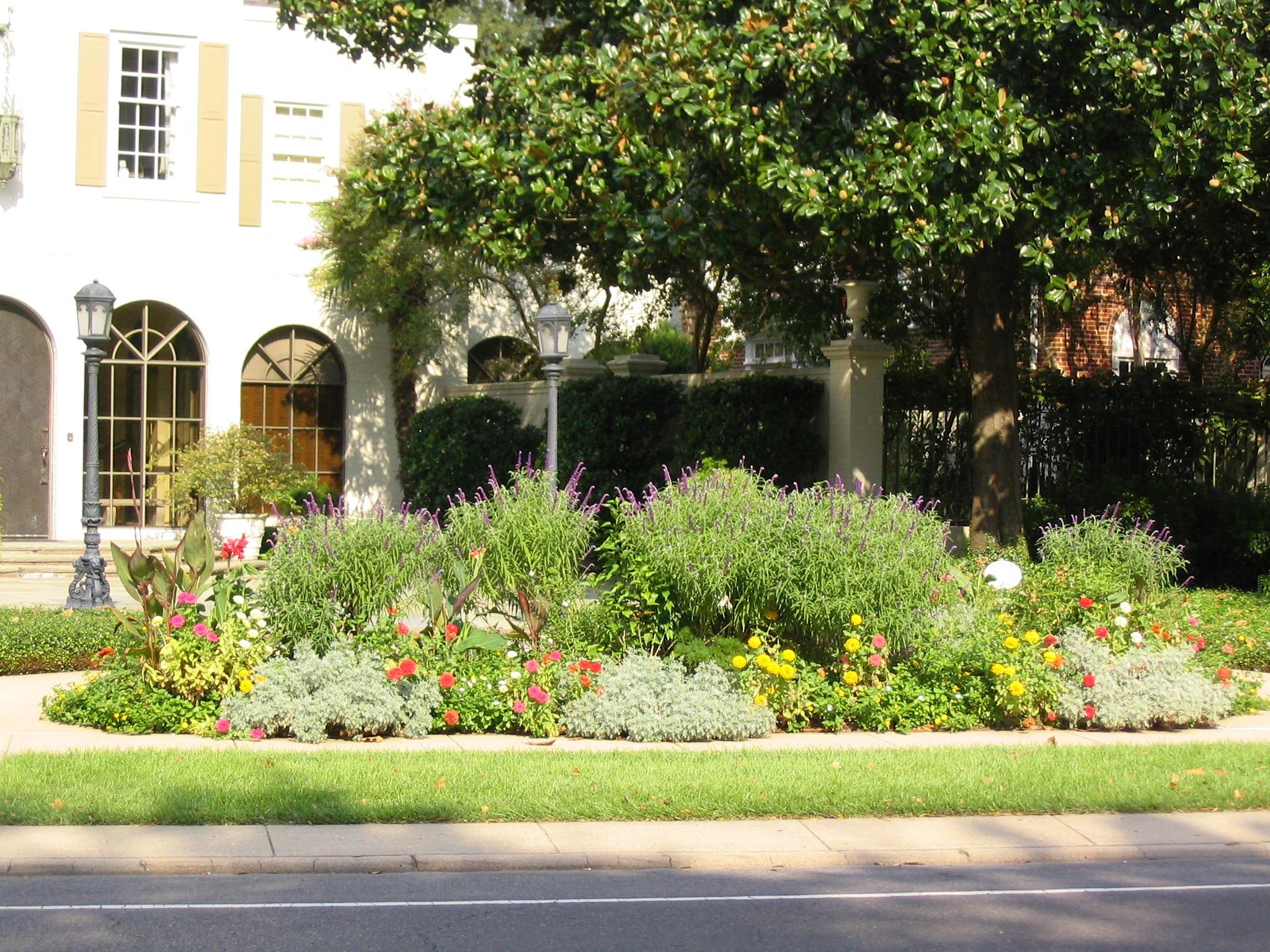 Plan Summer Flower Gardens Now